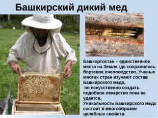Башкирский дикий мед Башкортостан – единственное место на Земле,где сохранило