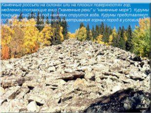 Каменные россыпи на склонах или на плоских поверхностях гор, медленно сползаю