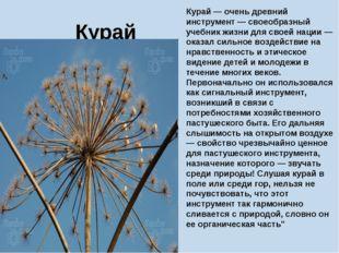 Курай Курай — очень древний инструмент — своеобразный учебник жизни для своей