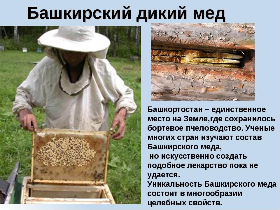 Башкирский дикий мед Башкортостан – единственное место на Земле,где сохранило...
