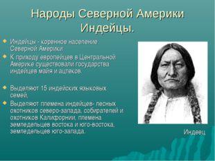 Народы Северной Америки Индейцы. Индейцы - коренное население Северной Америк