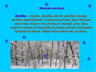 Зимние месяца Декабрь – студень. Декабрь мостит, декабрь гвоздит, декабрь пр