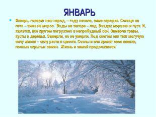 ЯНВАРЬ Январь, говорит наш народ, – году начало, зиме середка. Солнце на лето
