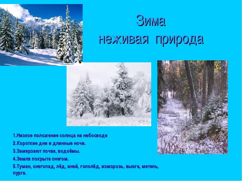 Зима неживая природа 1.Низкое положение солнца на небосводе 2.Короткие дни и...