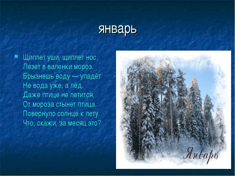 январь Щиплет уши, щиплет нос, Лезет в валенки мороз. Брызнешь воду — упадёт...