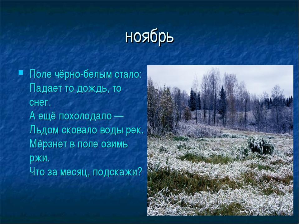 ноябрь Поле чёрно-белым стало: Падает то дождь, то снег. А ещё похолодало — Л...