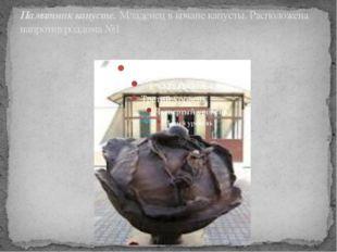 Памятник капусте. Младенец в кочане капусты. Расположена напротив роддома №1