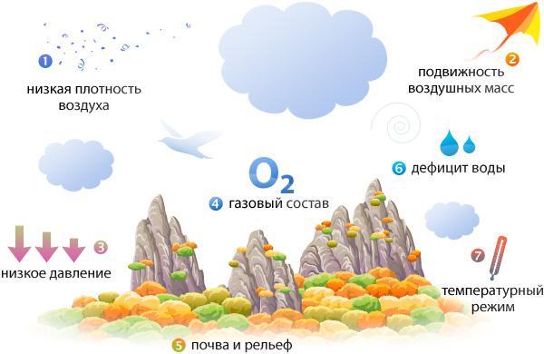 http://www.nscience.ru/biology/ecology/walking_on_a_biosphere/ground_and_air/scheme.jpg