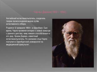 Чарльз Дарвин(1809 – 1882) Английский естествоиспытатель, создатель теории пр