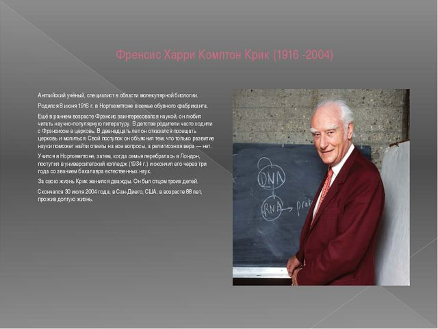 Френсис Харри Комптон Крик (1916 -2004) Английский учёный, специалист в облас...
