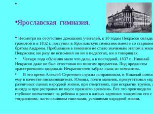 Ярославская гимназия. Несмотря на отсутствие домашних учителей, к 10 годам