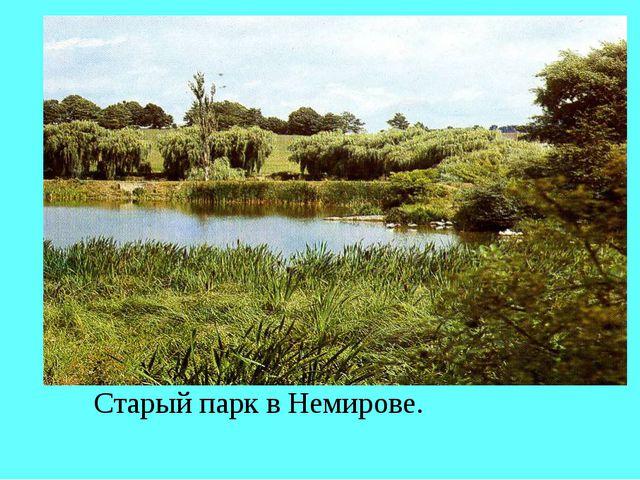 Старый парк в Немирове.
