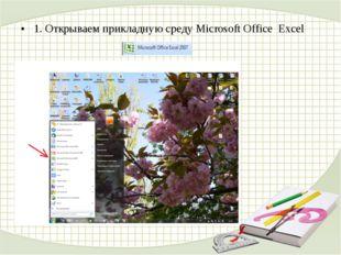 1. Открываем прикладную среду Microsoft Office Excel
