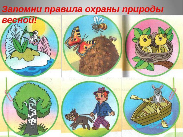 Запомни правила охраны природы весной!