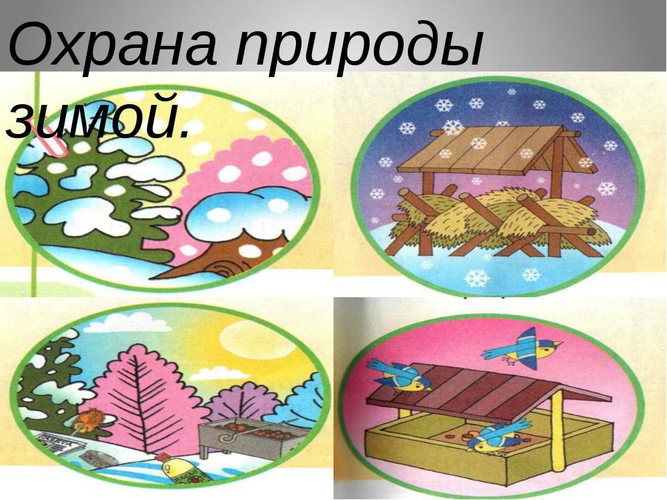 Охрана природы зимой.