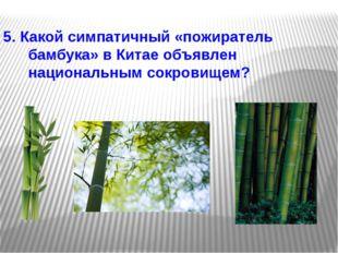 5. Какой симпатичный «пожиратель бамбука» в Китае объявлен национальным сокро