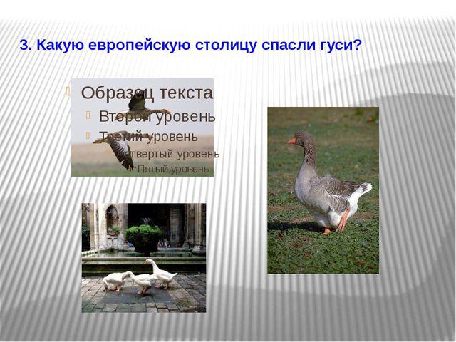 3. Какую европейскую столицу спасли гуси?