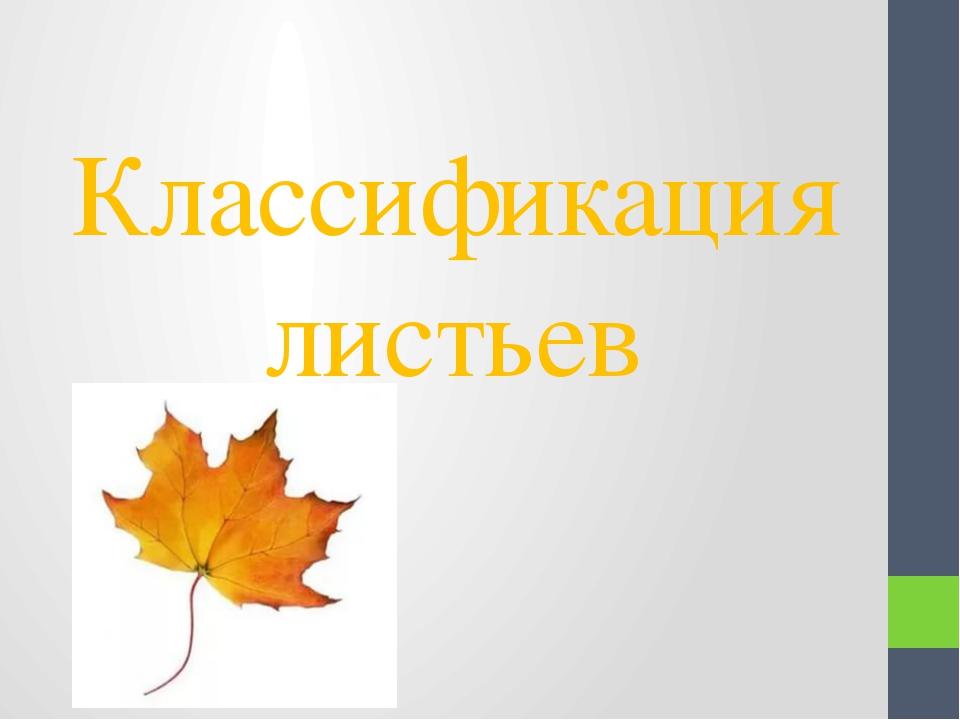 Классификация листьев