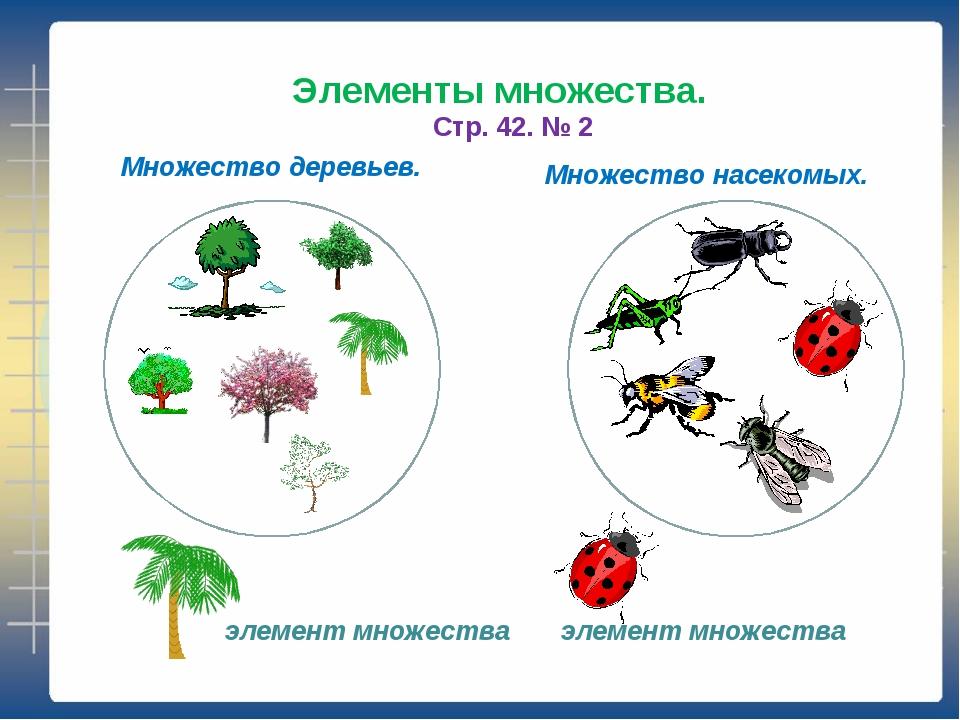 Множество деревьев. Элементы множества. Множество насекомых. Стр. 42. № 2 эле...