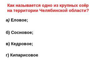 Как называется одно из крупных озёр на территории Челябинской области? а) Ел