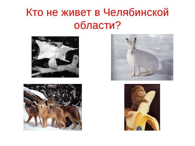 Кто не живет в Челябинской области?