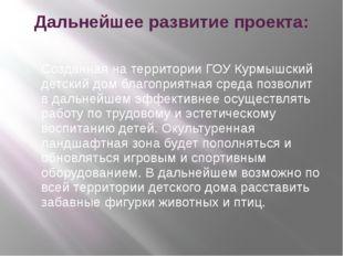 Дальнейшее развитие проекта: Созданная на территории ГОУ Курмышский детский д