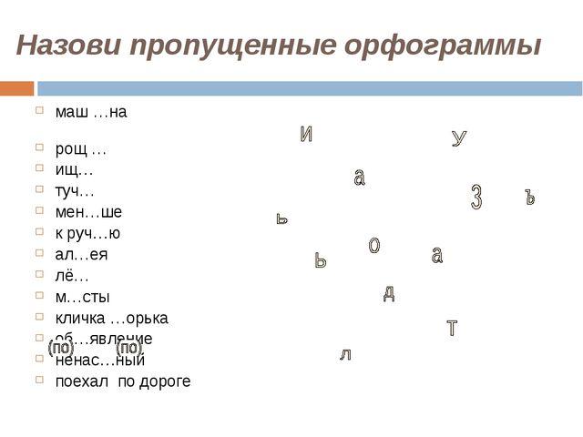 Назови пропущенные орфограммы маш …на рощ … ищ… туч… мен…ше к руч…ю ал…ея лё…...