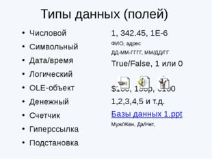 1, 342.45, 1Е-6 ФИО, адрес ДД-ММ-ГГГГ, ММ/ДД/ГГ True/False, 1 или 0 $100, 10