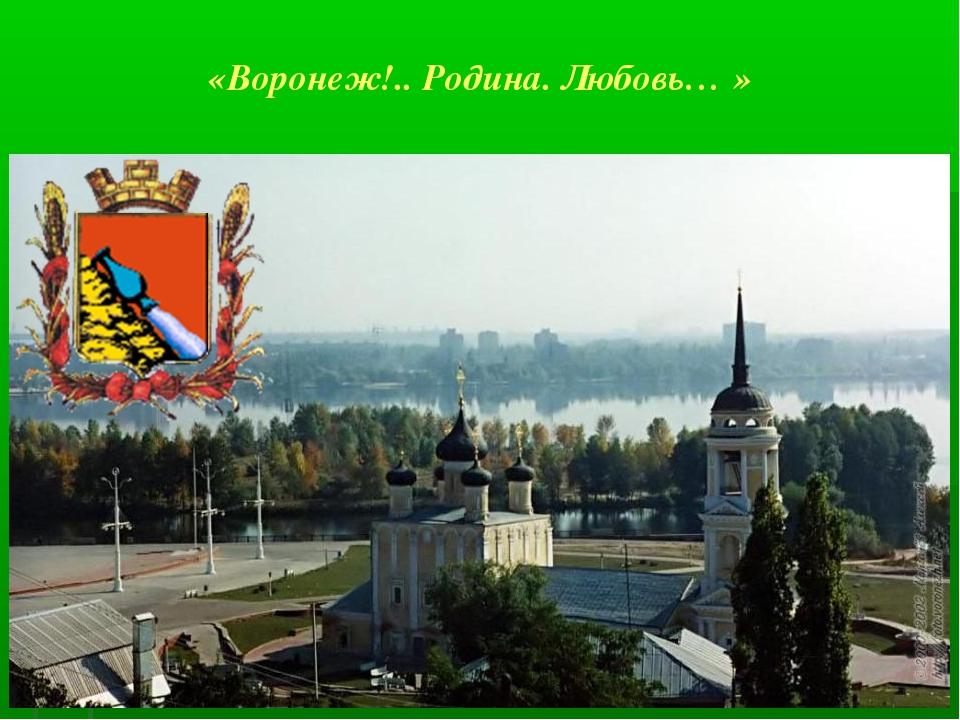 «Воронеж!.. Родина. Любовь… »
