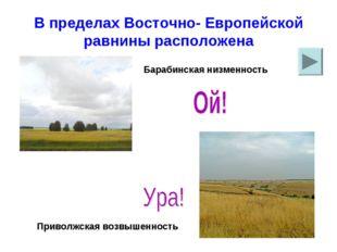 В пределах Восточно- Европейской равнины расположена Барабинская низменность