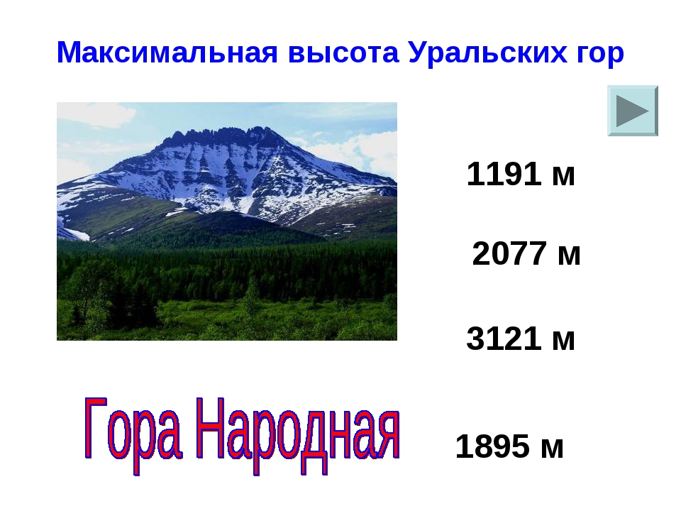 Максимальная высота Уральских гор 1895 м