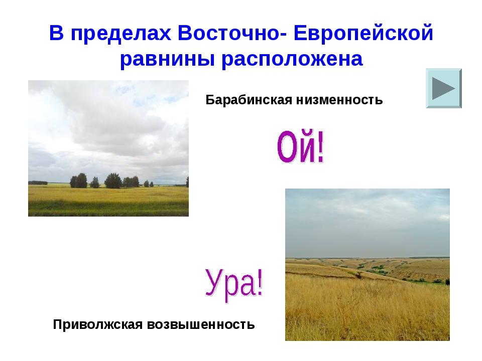 В пределах Восточно- Европейской равнины расположена Барабинская низменность...