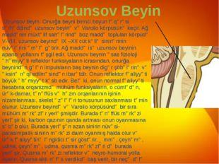 Uzunsov Beyin Uzunsov beyin. Onurğa beyni birinci boyun fəqərəsi sərhəddində