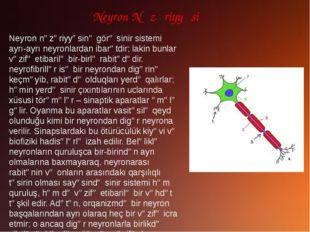 Neyron Nəzəriyyəsi Neyron nəzəriyyəsinə görə sinir sistemi ayrı-ayrı neyronla