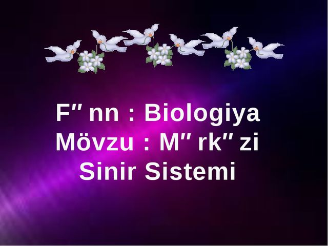 Fənn : Biologiya Mövzu : Mərkəzi Sinir Sistemi