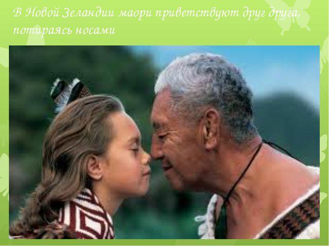 В Новой Зеландии маори приветствуют друг друга, потираясь носами 18 век