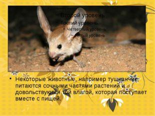 Некоторые животные, например тушканчик, питаются сочными частями растений и д