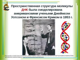Пространственная структура молекулы ДНК была смоделирована американскими уче
