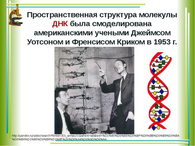 Пространственная структура молекулы ДНК была смоделирована американскими уче...