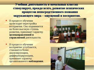 Учебная деятельность в начальных классах стимулирует, прежде всего, развитие