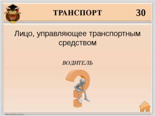 ТРАНСПОРТ 30 ВОДИТЕЛЬ Лицо, управляющее транспортным средством