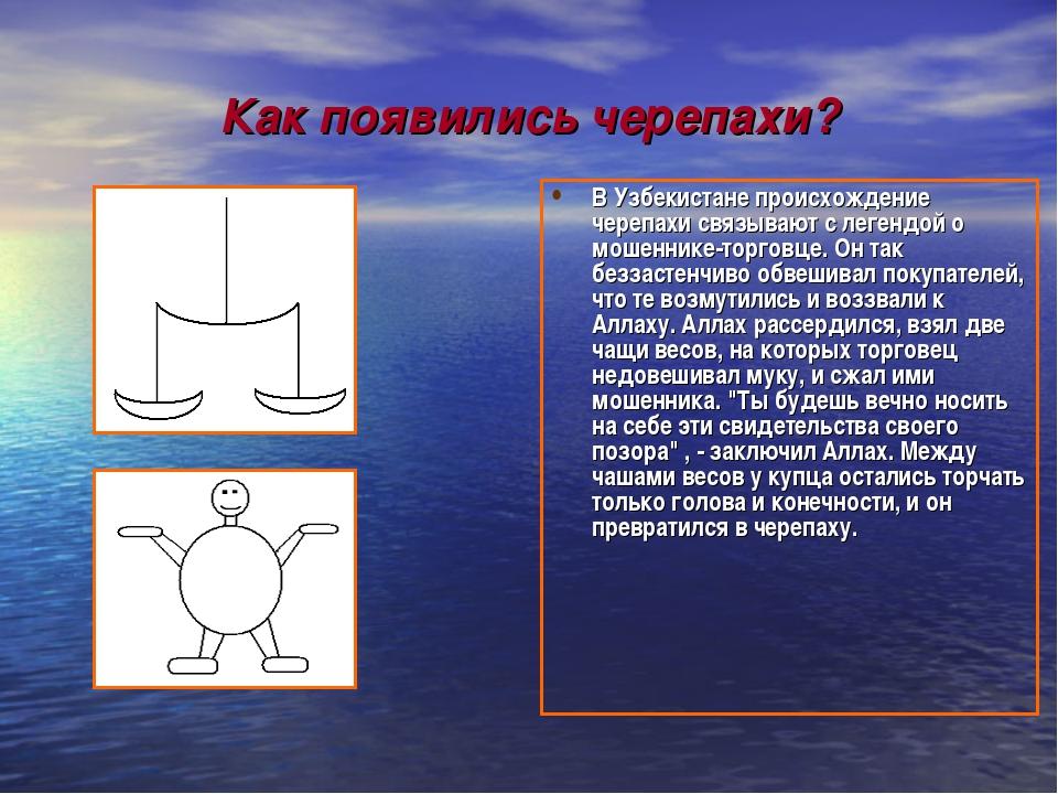 Как появились черепахи? В Узбекистане происхождение черепахи связывают с леге...