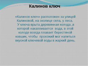 «Калинов ключ» расположен за улицей Калиновой, на околице села, у леса. У клю