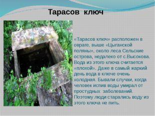 «Тарасов ключ» расположен в овраге, выше «Цыганской поляны», около леса Сельс