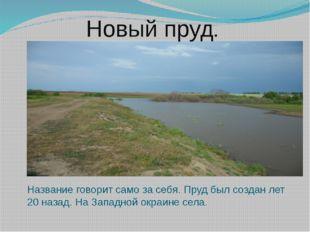 Новый пруд. Название говорит само за себя. Пруд был создан лет 20 назад. На