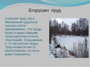 Егорушин пруд Егорушин пруд, как и Магазинный пруд были сделаны почти одновре