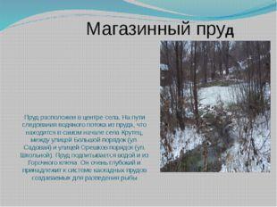 Пруд расположен в центре села. На пути следования водяного потока из пруда, ч