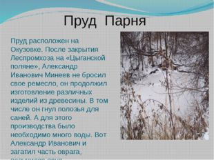 Пруд Парня Пруд расположен на Окузовке. После закрытия Леспромхоза на «Цыганс