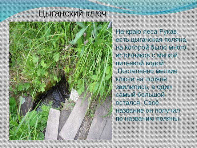 Цыганский ключ На краю леса Рукав, есть цыганская поляна, на которой было мно...