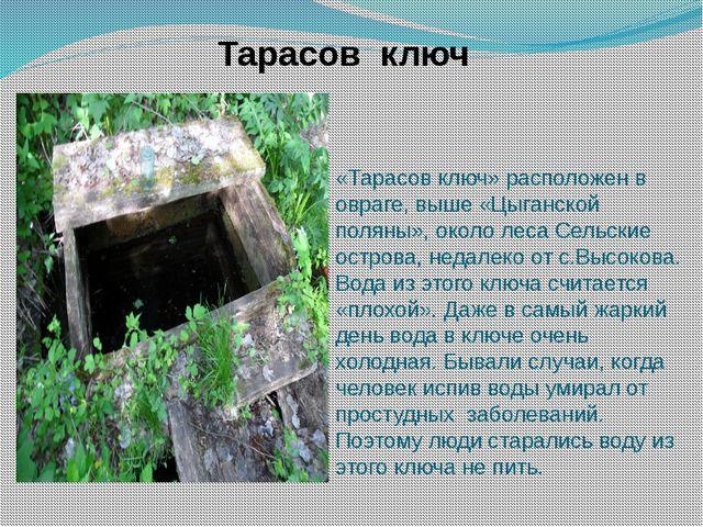 «Тарасов ключ» расположен в овраге, выше «Цыганской поляны», около леса Сельс...